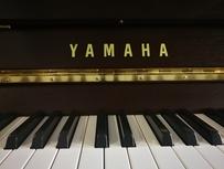 Yamaha b1 'SC2 Silent Piano' von 2019 in Nussbaum satiniert