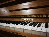Ibach 124 von 1930 in Holz satiniert